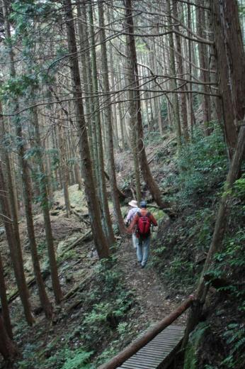 青山高原ハイキングコース