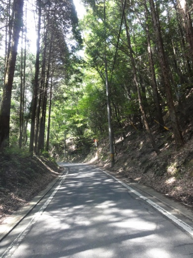 国道422号線・三田~諏訪