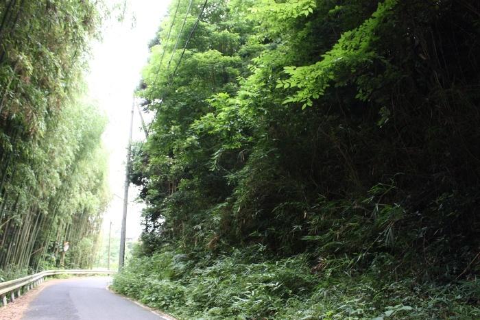 和銅の道(東高倉)