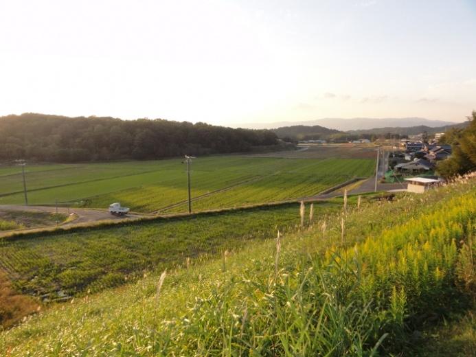田園風景(友生地区)