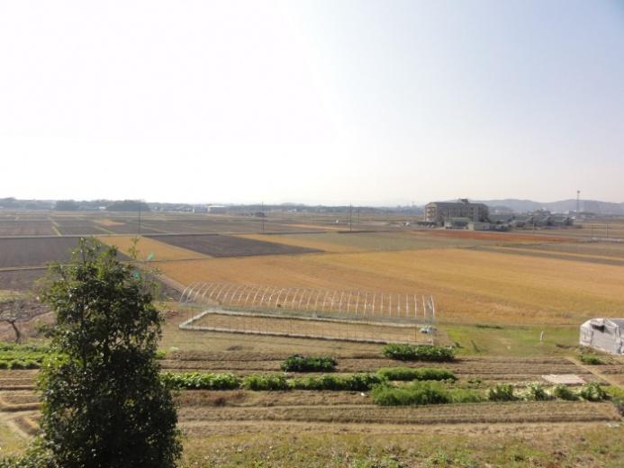 田園風景(高畑)